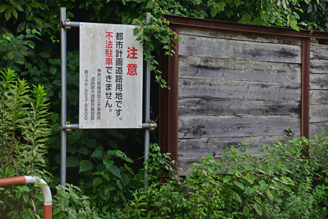DSC_8510-2.jpg