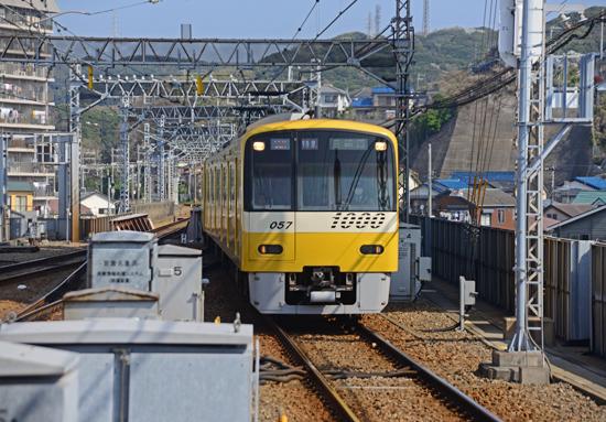 DSC_0643-2.jpg