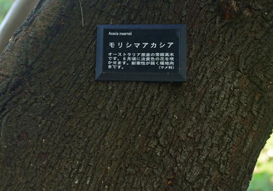 DSC_3000-3.jpg