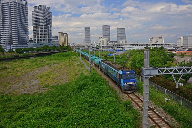 DSC_4504-2.jpg